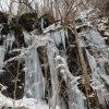 【十和田市】奥入瀬渓流の氷瀑が見られる時期は? 冬の奥入瀬渓流は綺麗だよ!