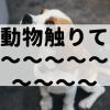 【モフモフ】動物を定期的に触りたくなる病について【アニマル失調】
